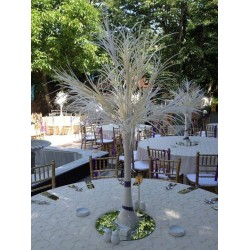 Ağaç Cam Vazo